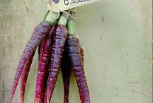 Kolonihagen  / Inspirasjon til grønnsakshagen