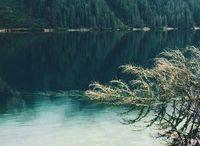 мир природы / фото