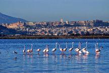 Honeymoon Sardinie