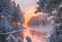 winter nature