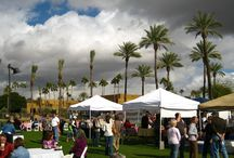 Wigwam Farmers Market / Farmers Market at Wigwam Resort in Litchfield Park, AZ.  We are here every Sunday from November through April.