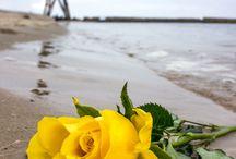 Cuxhaven / Die schönsten Landschaften rund um Cuxhaven