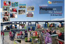 CM15018 Penguins on the Island / 20—23 April 2015