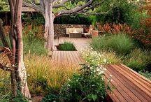 Trädgård trädäck