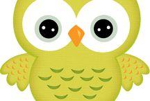 Bagoly / owl