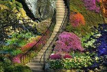 gardens/flowers & urns / by Soleil Anda Tierney