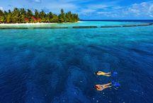 Kurumba Maldives  / Luxury Resort Maldives