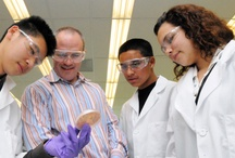 Synthetic Biology Education