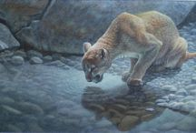 Furry Friends and Crazy Critters / Animal paintings