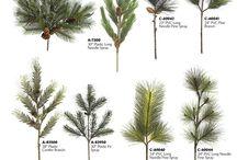 Botanic inspiration