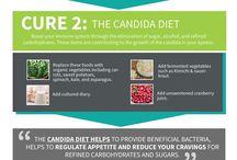 Candida yeast