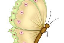 Бабочки, насекомые
