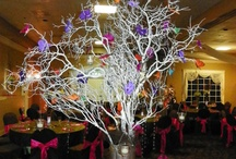 Quinceaneras by Apple Blossoms / Quinceanera Decorations