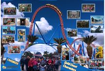 CM16026 GOLD COAST CHARACTERS / 27 May -05 June 2016 (10 Days/9 Nights)