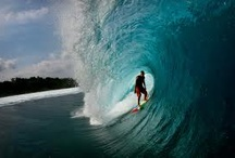 Surfer's paradise / Freedom. I'm loving it!