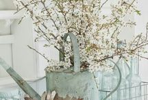 Vintage Watering Cans & Buckets