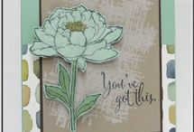 2015-16 Stampin' Up! Catalog / by Connie Babbert
