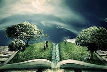 Libros y Bibliotecas