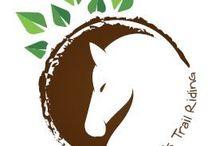 Business Logo / Woodlands Trail Riding Branding
