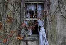 abandoned / by Dmarie Jacks