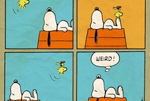 Snoopy / by Holly Tarr Edmonds