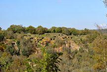 Prehistory - Antichi insediamenti preistorici nel Lazio