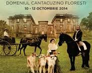Domeniul Cantacuzino Floresti