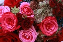 July Ruby Red Weddings
