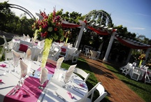 Wedding Receptions  / Joyous and beautiful outdoor wedding celebrations at Villa de Amore in Temecula CA.  / by Villa de Amore California Weddings