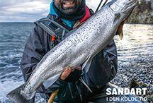 Sportsfiskeren - medlemsblad