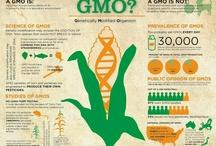 GMO'S / by Melanie Romero