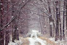 TÉL - Winter