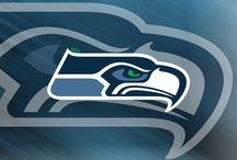 Seahawks <3 / by Christine Beirouty