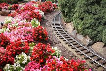 Trains and flowers