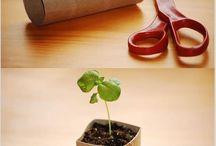 Urban Gardning / For the plants