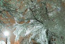 Winter/Zima