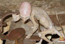 Aliens seen nowadays