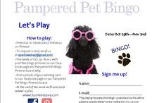 Pampered Pet Bingo / by Sparkle Abbey