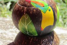 Coconut shell idea