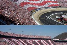 NASCAR - Tracks / by Lucy Butler