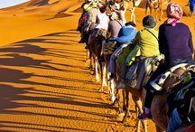 MOR DESERT / The beautiful, the mystical, the beguiling Sahara desert.