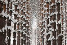 Siberia l KAAT Amsterdam / Interieur & Lifestyle - We came, we saw, we got inspired - Siberia