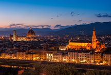 Room with VIEW - PLAZA HOTEL LUCCHESI FLORENCE / Our breathtaking view!