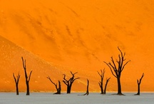 "Namibia / ""Leave nothing but your footprints!"" is Namibia's gentle request to visitors. The untamed land pulses with the time-old tribal traditions of its people. Their warmth and history impress adventurous guests as much as the vast Kalahari desert, Sossusvlei (site of the world's tallest sand dunes), free-roaming wildlife, and luxurious stays at Namibia's capitol, Windhoek. Truly, Namibia breathes beauty."