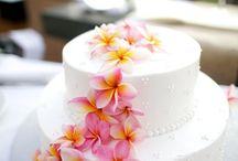 Cake / Blessed wedding Photography Cake ideas