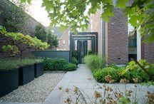 Moderne stadstuinen / Moderne stadstuin met hoogteverschillen en muurtjes, dit alles geeft een ruim effect aan de tuin. Deze is ingeplant met taxushaag, zuilcarpinus en siergras.