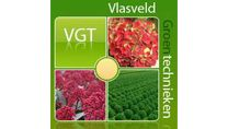 G-Fresh grower Vlasveld / Our conifer assortment consists of 30 varieties that we harvest selectively. With each variety we decide the preferable length for our customer. The conifers are cleaned before inserted in plastic bags, benefitting pot life. All our Christmas conifers are packaged in a plastic bag.