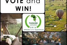 Ultimate Safari Experiences 2016 - The Big  Tuskers !