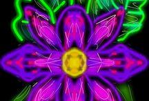 Glow Art / App Kid Glow Draw Disegni con il cell  https://play.google.com/store/apps/details?id=kids.doodle.glow.draw