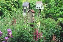 For The Birds! / Birdhouses, bird feeders...etc / by Nancy Peterson